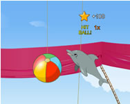 My dolphin show 1 HTML